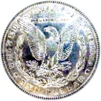 Silver Dollar_2x2_180