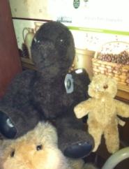 TeddyBearDepression