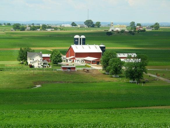 Henry Metzler Farm_6x4_180_3294