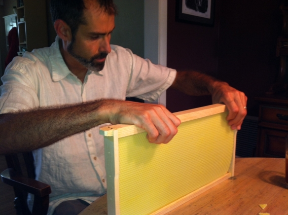 Joel Beaman and bee hive frame