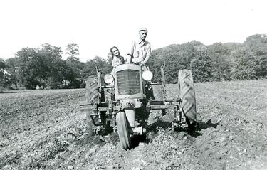 Cultivating land for tomato crop in Bainbridge