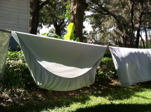 Sheets blowing in sync with frond on banana tree in background