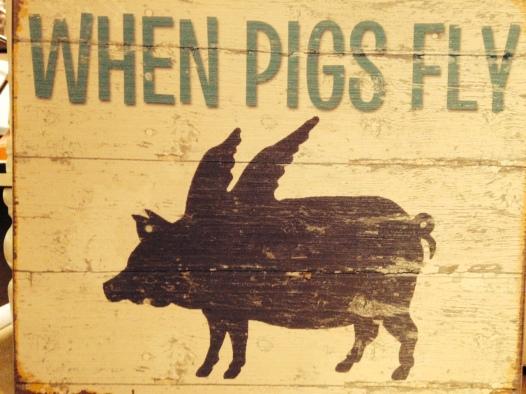 pigsFly