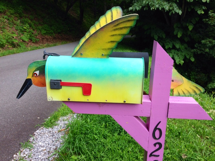 """Hummingbird says, """"Fly letter fly - come back with quick reply"""""""