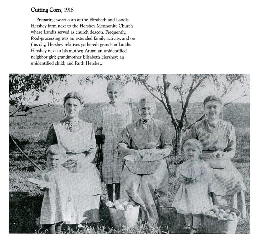 Web_Mennonite-Women_Cutting-Corn_p124