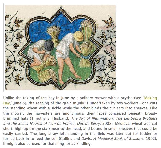 Grain field in Medieval Times: Metropolitan Museum of Art
