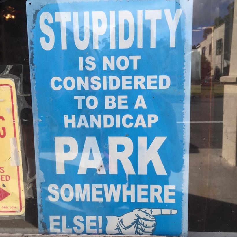 StupidityParking